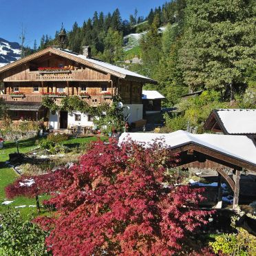 Frühling, Bergchalet Klausner Edelweiß, Ramsau im Zillertal, Tirol, Tirol, Österreich