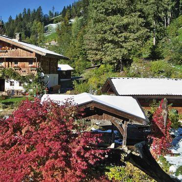 Spring, Bergchalet Klausner Edelweiß, Ramsau im Zillertal, Tirol, Tyrol, Austria