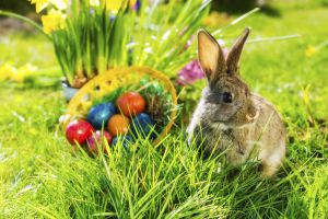 Happy Easter Days 4 =3