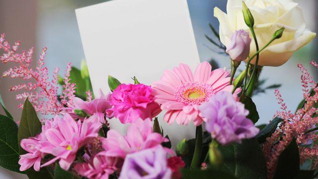 Schwarzbrunn Surprise & Flowers