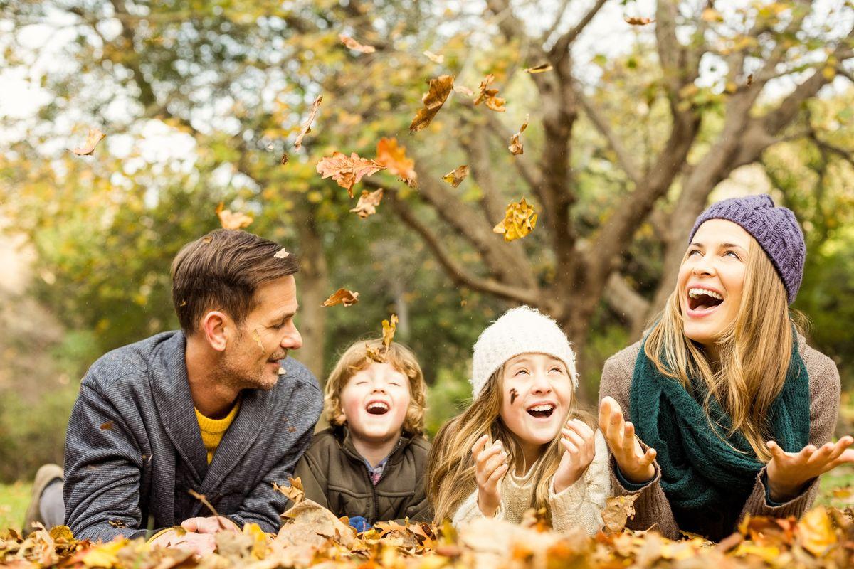 Wellness & Happy Family 7=6