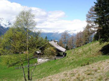 Mölltalhütte - Carinthia  - Austria
