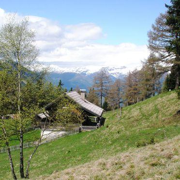 Sommer, Mölltalhütte, Penk, Kärnten, Kärnten, Österreich