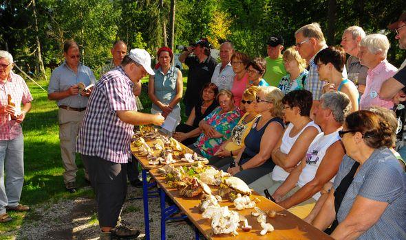 15th Mushrooms week at Quellenhof
