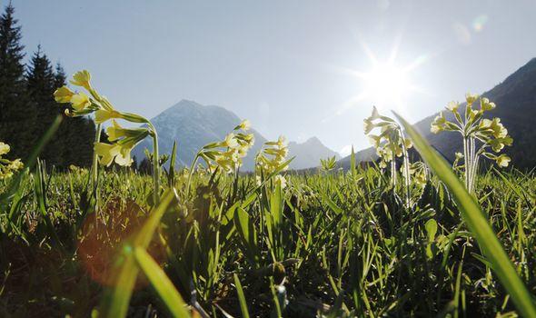 Frühlingstage im Quellenhof | 4 Übernachtungen