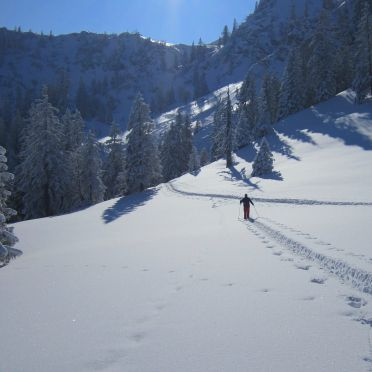 Winter landscape, Turracher Hütte in Ebene Reichenau - Turracher Höhe, Kärnten, Carinthia , Austria