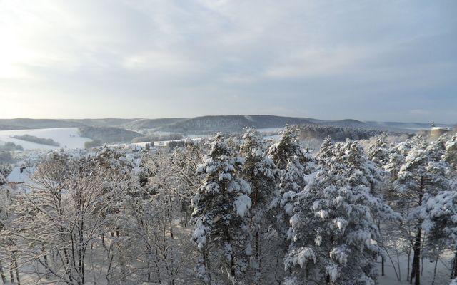 Winter Sonnenhügel Bad Kissingen (3).JPG