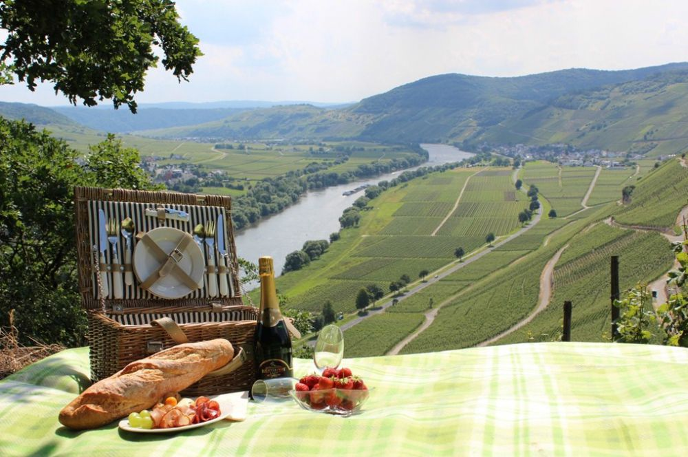 Recreative days in the Moselle valley