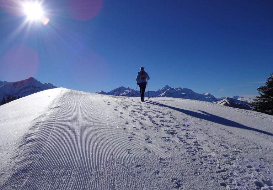 Winter hiking for gourmets   No.1