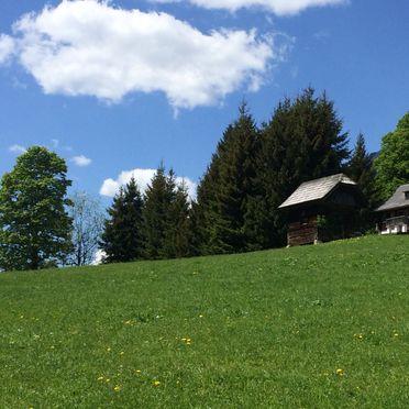 Sommer, Hütte Weikhardt in Tauplitz, Steiermark, Steiermark, Österreich