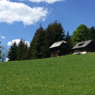 Sommer, Hütte Weikhardt, Tauplitz, Steiermark, Steiermark, Österreich