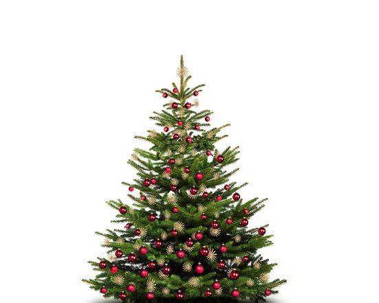 Friedliche Weihnachten | 7 ÜN