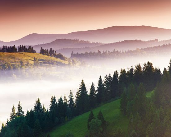Pure Black Forest | 5 nights