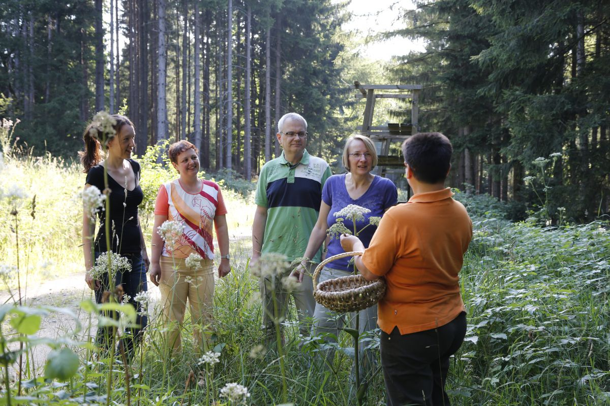 Herbstangebot Indian-Summer im Fichtelgebirge