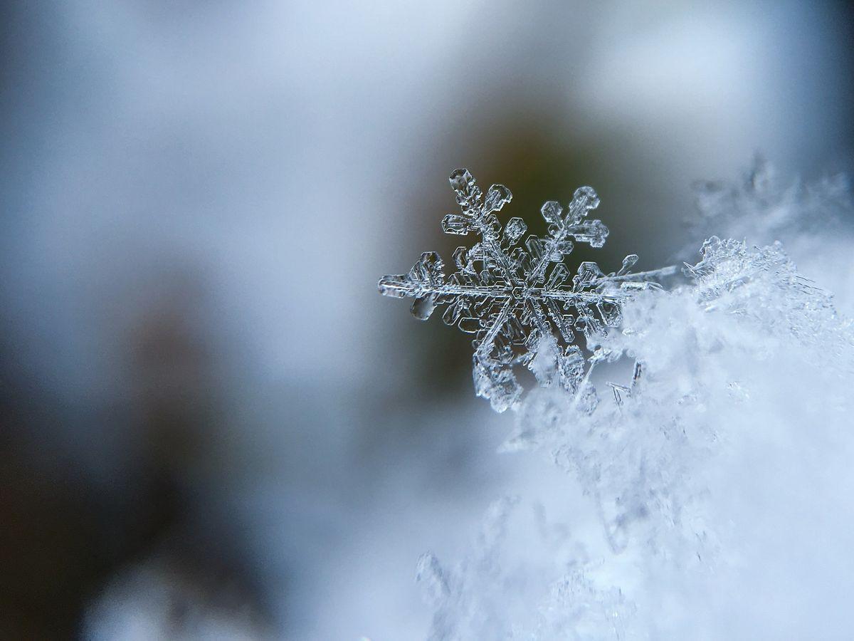 Schneekristall - Winter erleben im Allgäu