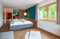 Superior room Hoher Ifen (2/2) - Berghotel Ifenblick