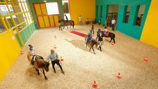 Im Familotel Sonnenpark erleben die Kinder ein unvergessliches Reiterlebnis.