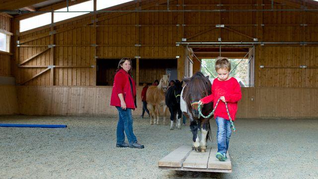 Pony-Urlaubstage