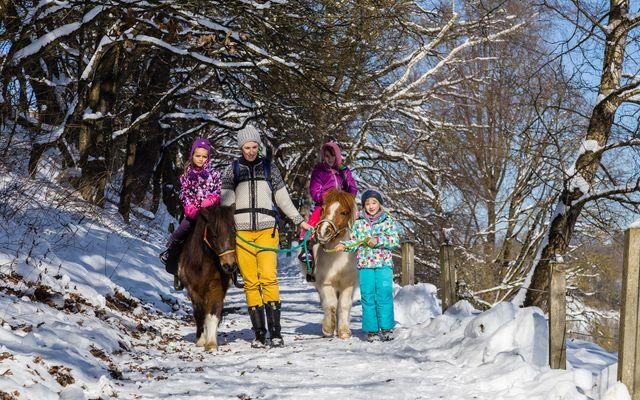 Winterurlaub im Familienhotel im Bayerischen Wald mit Schlittenfahren am Hotel.jpg