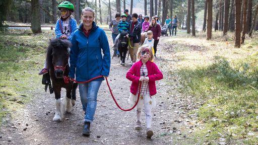 Jeden Samstag findet eine gemeinsame Familienwanderung mit den Ponys statt.