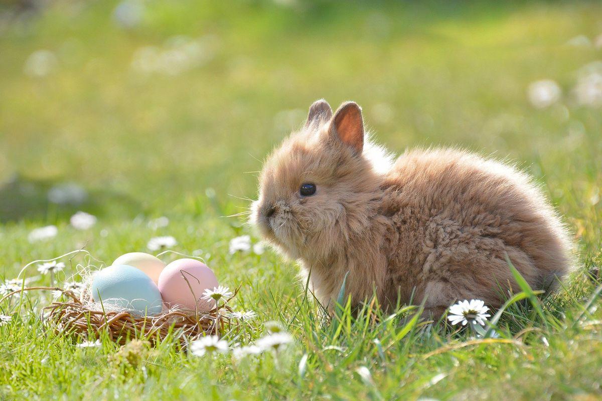 Ostern mit der Family