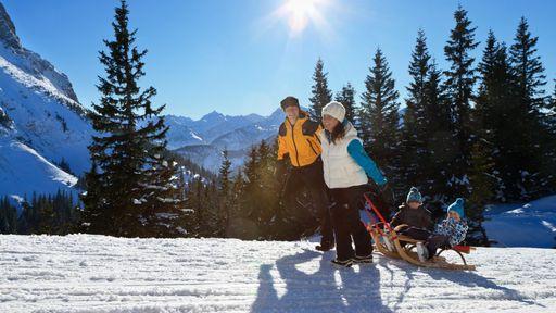 Rauschen Sie auf der längsten Naturrodelbahn Deutschlands den Berg mit dem Schlitten hinunter