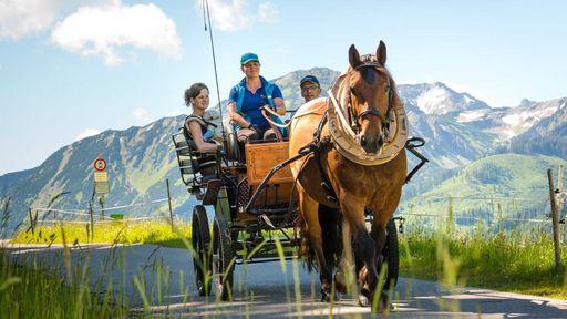 Familienurlaub am Reiterhof im Familotel Krone - Das ist Reitspaß pur!