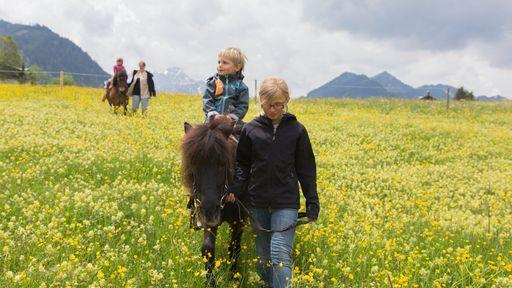 Geführtes Ponyreiten mit den Ponys Cola und Whisky im Familotel Alphotel erleben.
