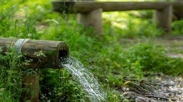 """Themenwoche """"Wasser- Quelle des Lebens"""""""