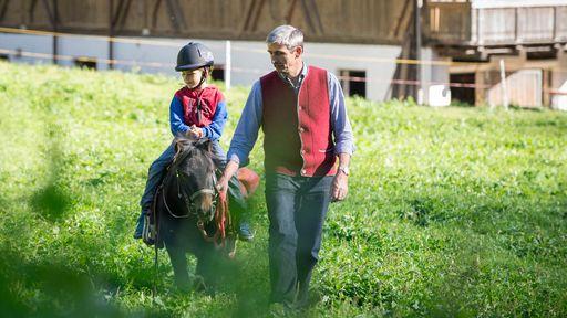 Der Bauernhof des Familotels Huber ist das Zuhause von Ziegen, Schafen, Schweinchen, Häschen, Hühnern und Ponys.