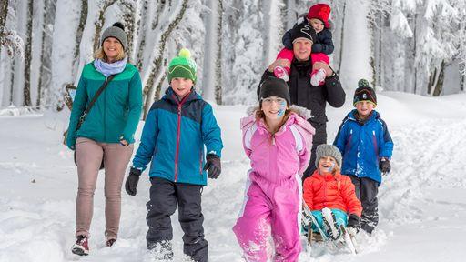 Tief verschneite Wälder laden auch zu Aktivitäten abseits der Skipisten ein.