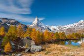 Goldener Herbst mit Halbpension