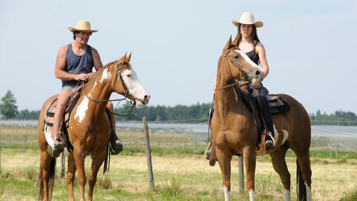 Biohotel Gerbehof: Pferde Ausflug