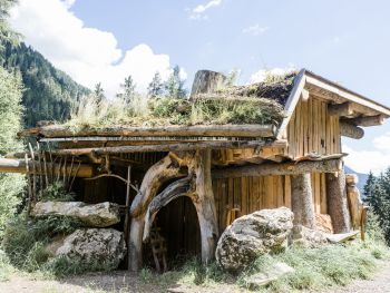 Chalet Wildberg - Salzburg - Austria