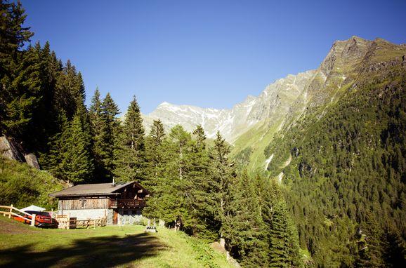 Sommer, Tröglesalm, Matrei in Osttirol, Tirol, Tirol, Österreich