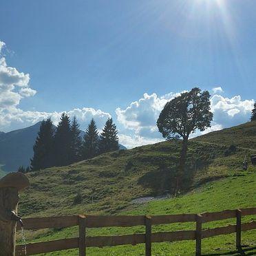 Eibingalm, Sommer