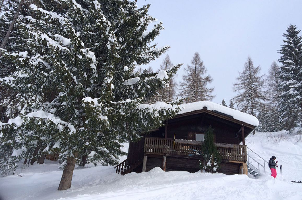 Schwammerlhütte, Winter