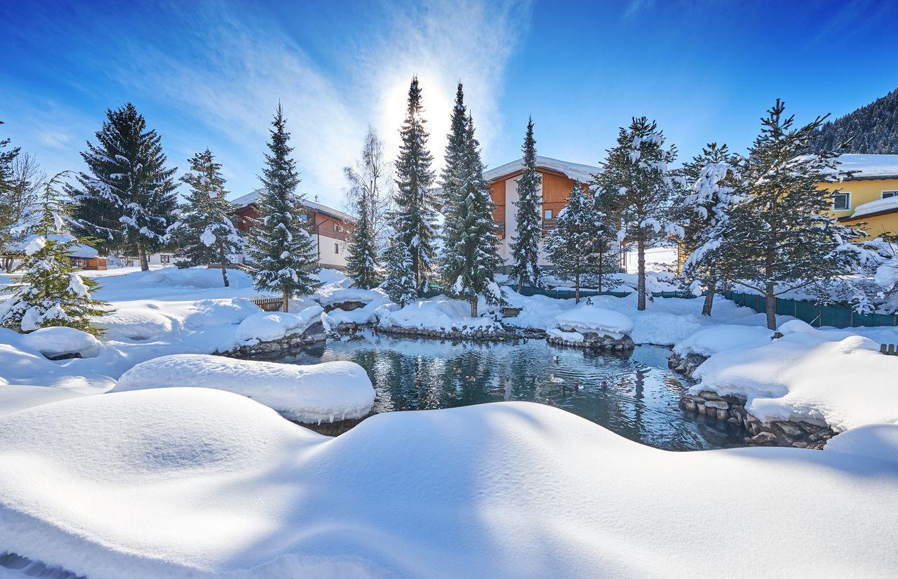 Schnee Sonnberg