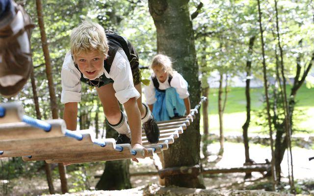 Kinder Kletterwald