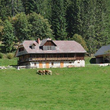 Summer, Almhütte Kuhgraben, Bad St. Leonhard, Kärnten, Carinthia , Austria