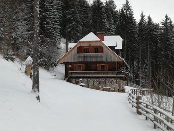 Almhütte Kuhgraben - Carinthia  - Austria