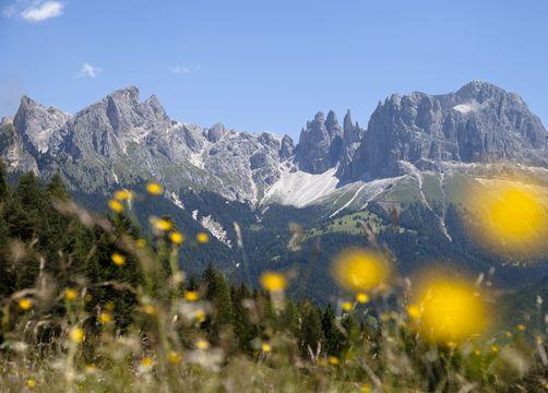 Bio- und Bikehotel Steineggerhof, Steinegg, Südtirol, Trentino-Alto Adige, Italia (31/39)