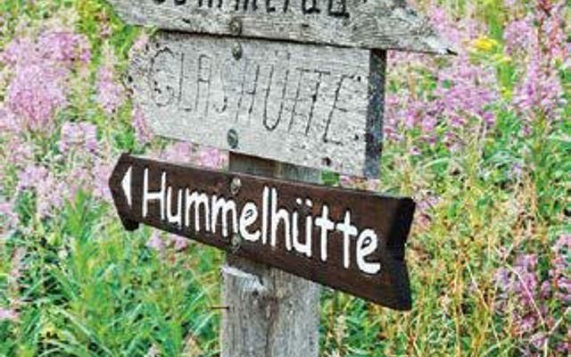 Der Herbst färbt den Schwarzwald bunt