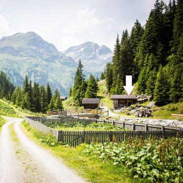 Sommer, Paul's Alm in Matrei in Osttirol, , Tirol, Österreich