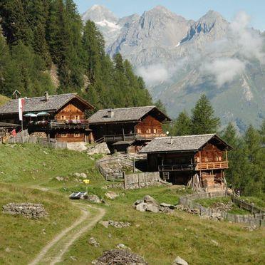 Sommer, Arnitzalm, Matrei in Osttirol, Tirol, Tirol, Österreich