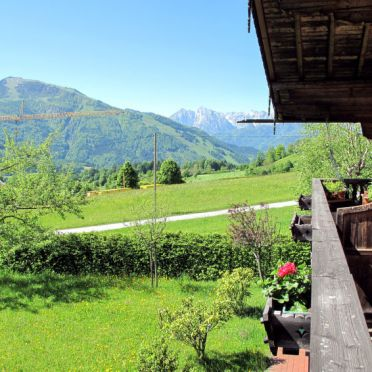 Innen Sommer 2, Ferienhütte Marianne in Oberbayern, Reit im Winkl, Oberbayern, Bayern, Deutschland