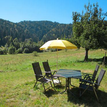 Innen Sommer 2, Schwarzwaldhütte Bistenhof, Hinterzarten, Schwarzwald, Baden-Württemberg, Deutschland