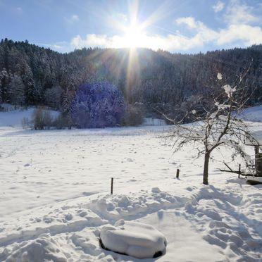 Außen Winter 22, Schwarzwaldhütte Bistenhof, Hinterzarten, Schwarzwald, Baden-Württemberg, Deutschland