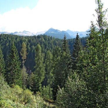 Außen Sommer 5, Chalet Baita El Deroch, Predazzo, Fleimstal, Trentino-Südtirol, Italien