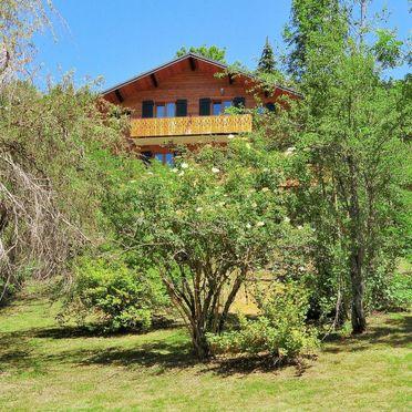 Außen Sommer 2, Chalet fer à Cheval, Châtel, Savoyen - Hochsavoyen, Auvergne-Rhône-Alpes, Frankreich
